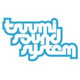 MEET TSUUMI SOUND SYSTEM AGENTS AT WOMEX 13