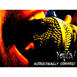 ACOUSTIQUEMENT CORRECT / YOPLA! / Acoustically Correct